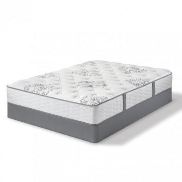 Serta Perfect Sleeper Dellridge Plush Mattresses and Sets